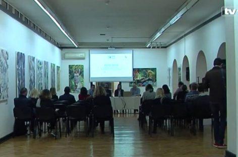 TV1 VIDEO: Galerijama problem krađa umjetnina
