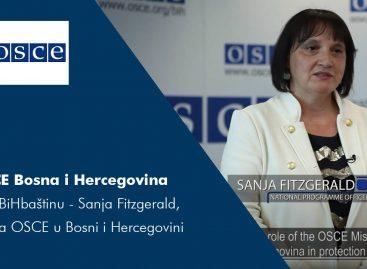#iJaBiHbaštinu – Sanja Fitzgerald,  Misija OSCE u Bosni i Hercegovini